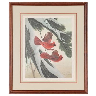 "John Ruthven Offset Lithograph ""Cardinal,"" Late 20th Century"