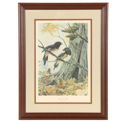 "John Ruthven Offset Lithograph ""Rufous-Sided Towhees"""