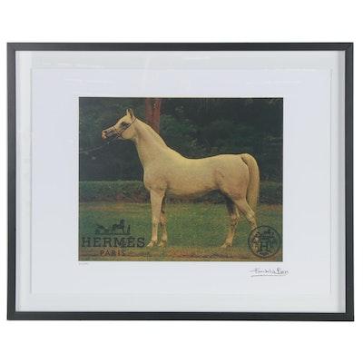 Offset Lithograph after Fairchild Paris of Arabian Horse