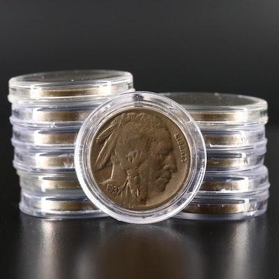 Twelve Buffalo Nickels