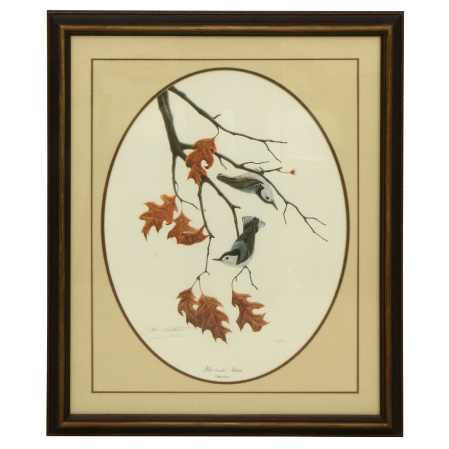 """John A. Ruthven Offset Lithograph """"White-Breasted Nuthatch,"""" Late 20th Century"""