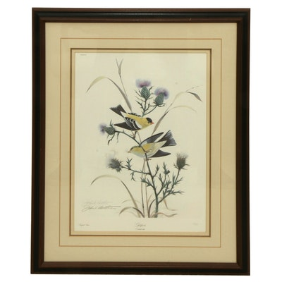 "John A. Ruthven Offset Lithograph ""Goldfinch"" Late 20th Century"