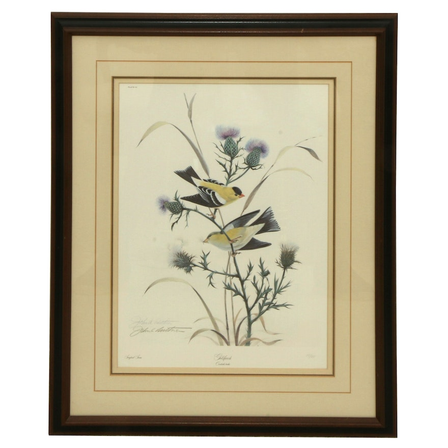 """John A. Ruthven Offset Lithograph """"Goldfinch"""" Late 20th Century"""