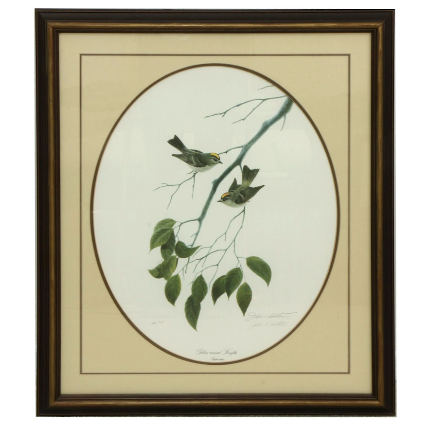 """John A. Ruthven Offset Lithograph """"Golden-Crowned Kinglets,"""" Late 20th Century"""