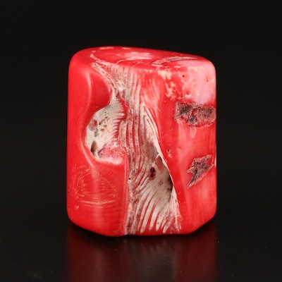 Loose Polished Brack Coral