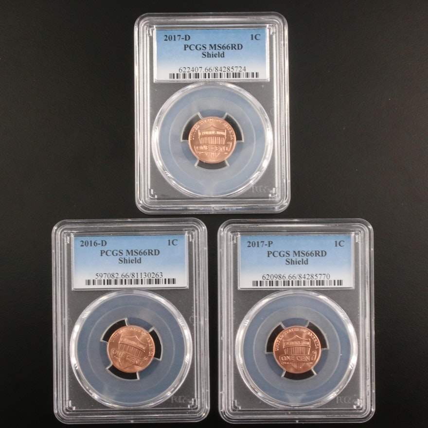 Three PCGS Graded MS66RD Lincoln Shield Cents