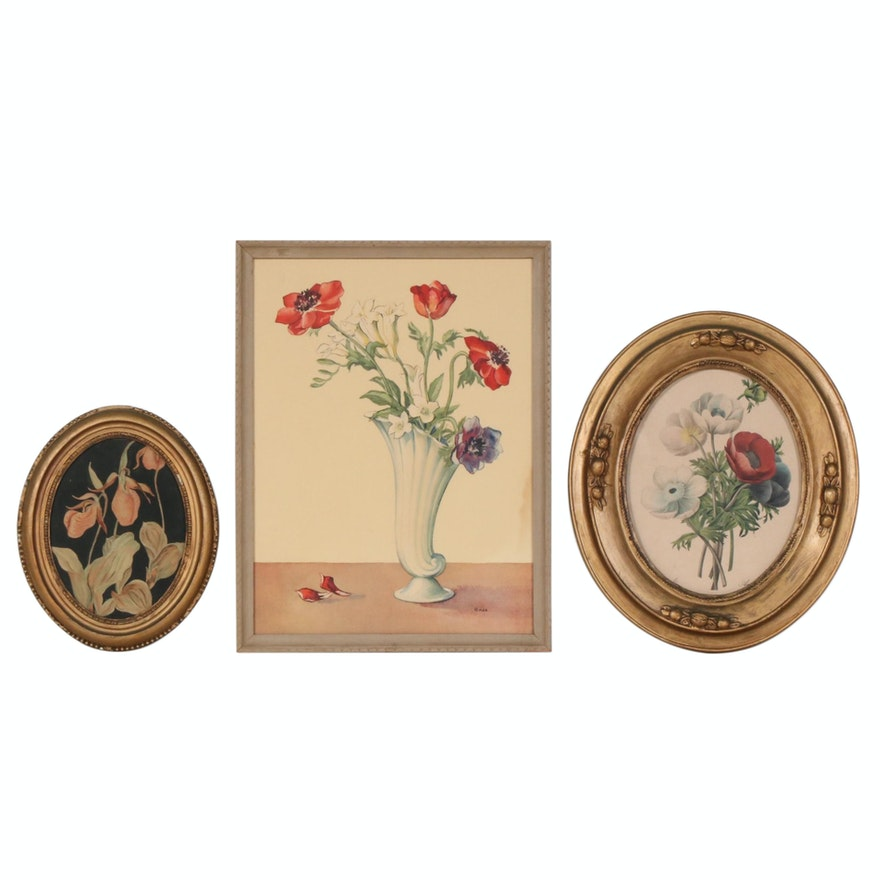 Botanical Watercolor Painting and Offset Lithographs, Mid-20th Century