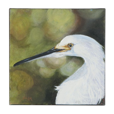 Tom Shelar Portrait of Snowy Egret Oil Painting, 21st Century