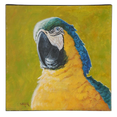 Tom Shelar Macaw Parrot Oil Portrait, 21st Century