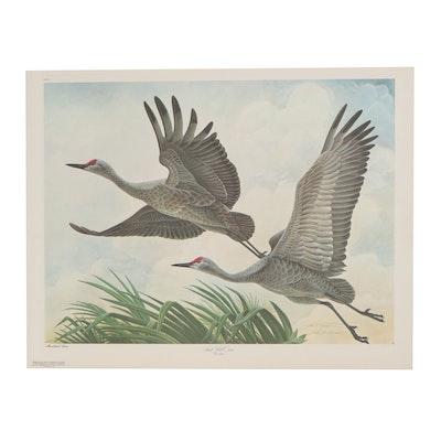 "John A. Ruthven Offset Lithograph ""Sand Hill Cranes,"" Late 20th Century"
