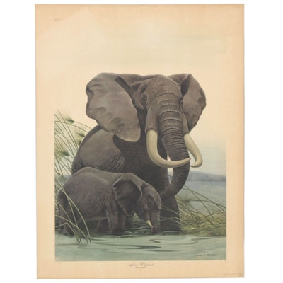 "John A. Ruthven Offset Lithograph ""African Elephants,"" Late 20th Century"