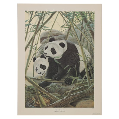 "John A. Ruthven Offset Lithograph ""Giant Panda,"" Late 20th Century"