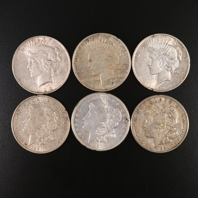 Six Morgan and Peace Silver Dollars