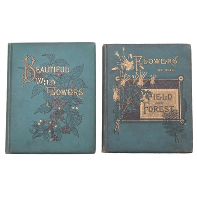 """Flowers of the Field and Forest"" and ""Beautiful Wild Flowers,"" 1882–1883"
