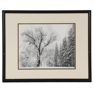 "Offset Lithograph after Ansel Adams ""Oak Tree, Snow Storm, Yosemite"""