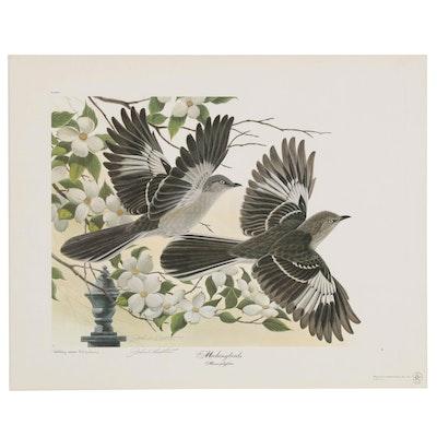 "John A. Ruthven Offset Lithograph ""Mockingbirds"""
