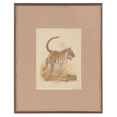 "Offset Lithograph after John Ruthven ""Bengal Tiger II,"" circa 1970"