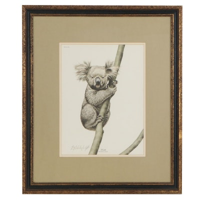 "Guy Coheleach Offset Lithograph ""Koala,"" Late 20th Century"