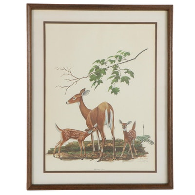 "Ray Harm Offset Lithograph ""Whitetail Deer,"" Late 20th Century"