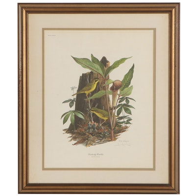 """Ray Harm Offset Lithograph """"Kentucky Warblers,"""" Late 20th Century"""