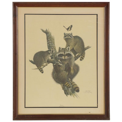 "Ray Harm Offset Lithograph ""Raccoon,"" Late 20th Century"