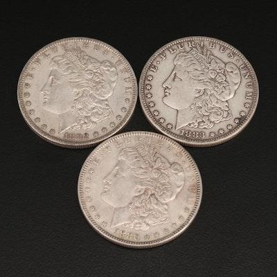 Three Morgan Silver Dollars