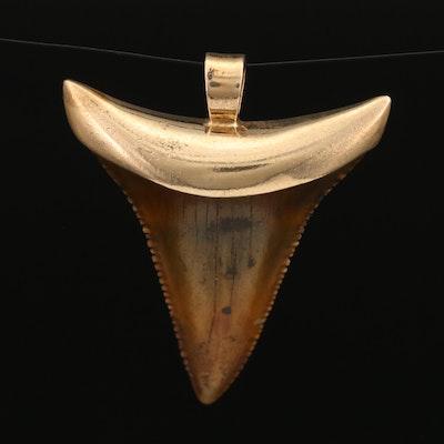 14K Petrified Shark Tooth Pendant