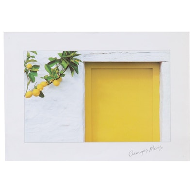 "Offset Lithograph after Georges Meiss ""Lemons with Yellow Door"""