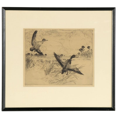 "Frank Weston Benson Etching ""Mallards, No. 2,"" Late 19th Century"