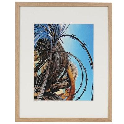 "Janice Schuler Digital Photograph ""Wire,"" 2019"