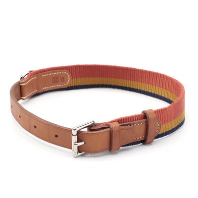 Hermès Pet Collar in Rocabar Nylon Canvas and Vache Hunter Leather with Box