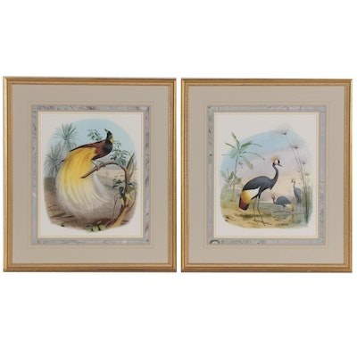 Offset Lithographs of Exotic Birds, 21st Century
