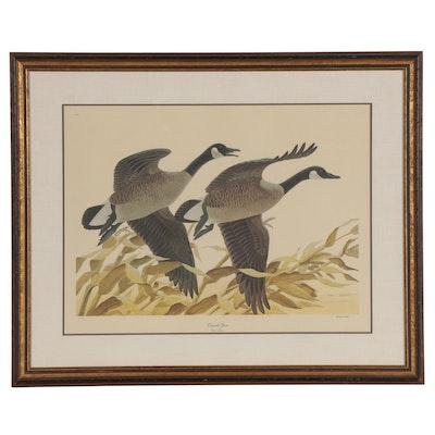"""John Ruthven Offset Lithograph """"Canada Geese"""""""