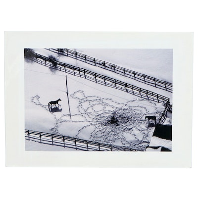 William D. Wade Dye Sublimation Print of Horses in Snowy Pasture