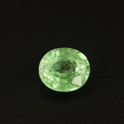 Loose 1.08 CT Oval Faceted Tsavorite