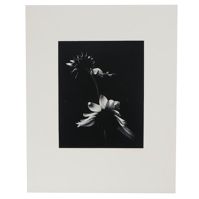 "Paul Caponigro Black and White Photograph ""Two Sunflowers,"" Late 20th Century"