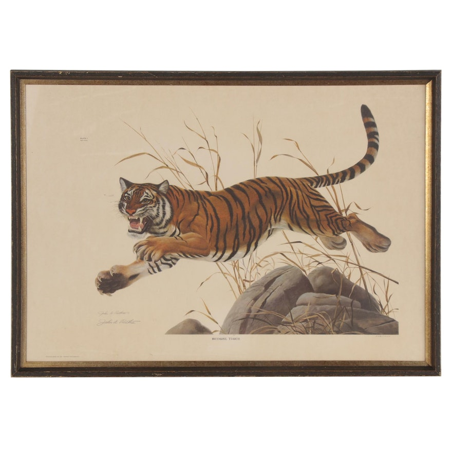 "John A. Ruthven Offset Lithograph ""Bengal Tiger,"" Late 20th Century"