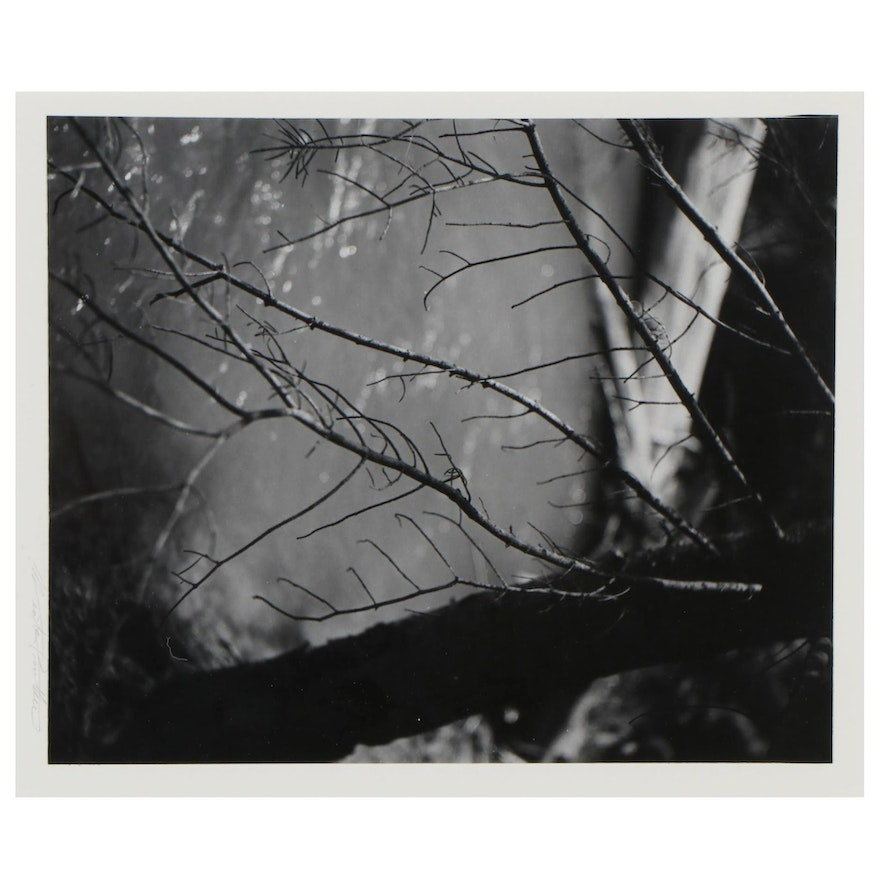 Winter Phillips Prather Silver Gelatin Photograph and Photography Book
