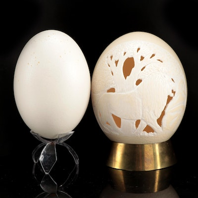 Decorative Carved Ostrich Egg and Kiwi Egg with Stands