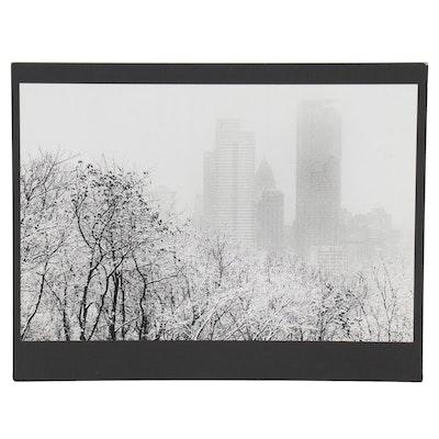 """William D. Wade Silver Gelatin Print """"Dark Branches Reach to Winter Sky"""""""