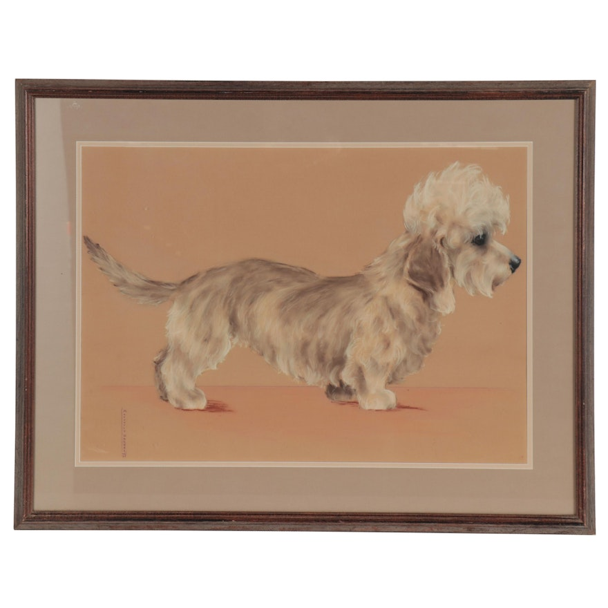 Marjorie Walker Pastel Drawing of Dandie Dinmont Terrier, 1935