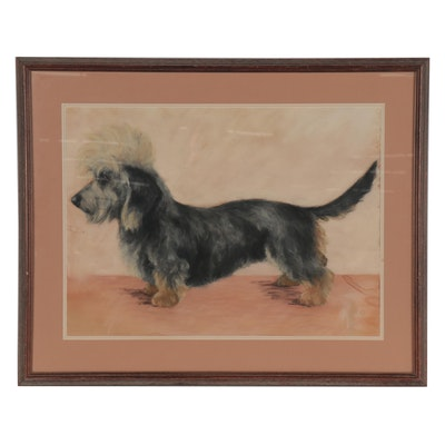 Marjorie Walker Pastel Drawing of Dandie Dinmont Terrier, Mid-20th Century