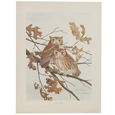 """John A. Ruthven Offset Lithograph """"Screech Owls"""""""