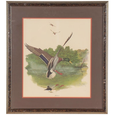 "Ray Harm Offset Lithograph ""Mallard,"" Late 20th Century"