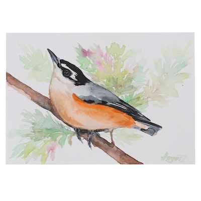 "Anne ""Angor"" Gorywine Miniature Watercolor Painting of Red Breasted Nuthatch"
