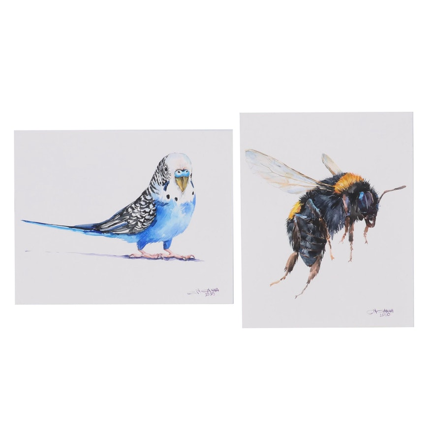 Ganna Melnychenko Watercolor Painting of Budgerigar and Bumblebee, 2020