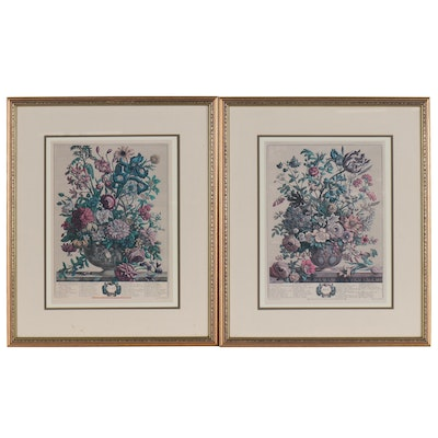 Botanical Offset Lithographs after Henry Fletcher and Robert Furber