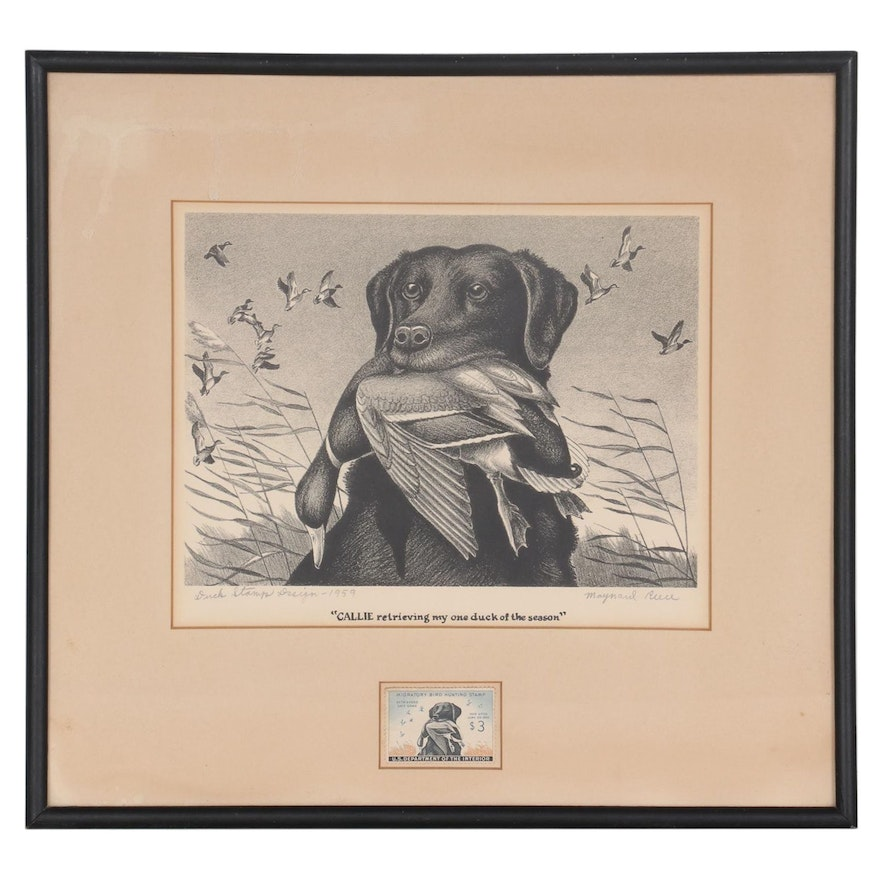 "Maynard Reece Etching ""Callie"" with Migratory Bird Hunting Stamp, 1959"