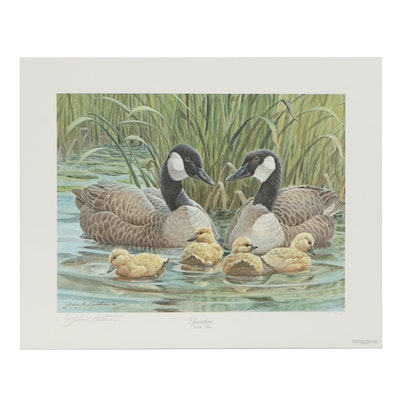 "John A. Ruthven Offset Lithograph ""Generations - Common Goose"""