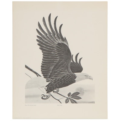 """Offset Lithograph after John Ruthven """"Bald Eagle"""" with Periodical Coverage"""